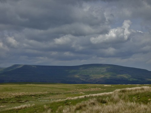 Brecon Beacons  National Park in Wales. Britain - June 2014