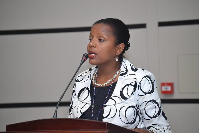 USAID West Africa Partners Meeting, April 2014-Presentation on AL II Program