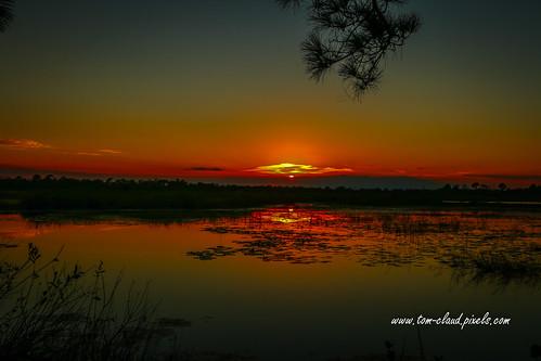 sun sunset water marsh nature mothernature landscape outdoorrs outside hawksbluff jensenbeach florida usa