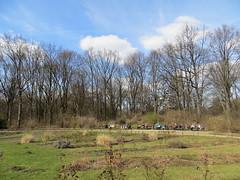 00735657 Tiergarten