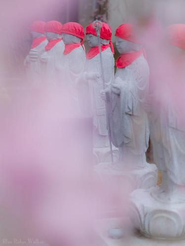 Jizo in the spring
