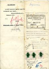 """III/8. A zsidóktól elvett szőlőbirtokotok """"átadása"""" a megerősítendő magyar középosztálynak K184_1944_27_133198_370o"""