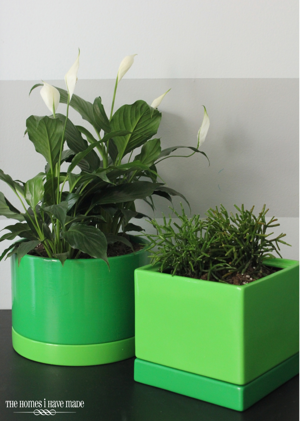 Green Planters-007