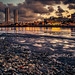 Recife No Lixo by rafael_heso