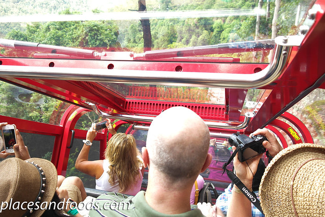 scenic world railway cabin