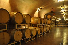 Paso Robles and wines
