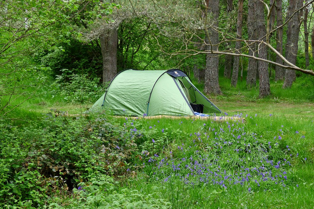 Woodland Camping at Cannich