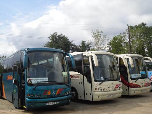SDC13204