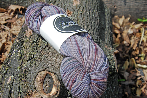 Skein of handdyed merino fingering weight Sheepspot yarn