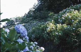 filmscan936