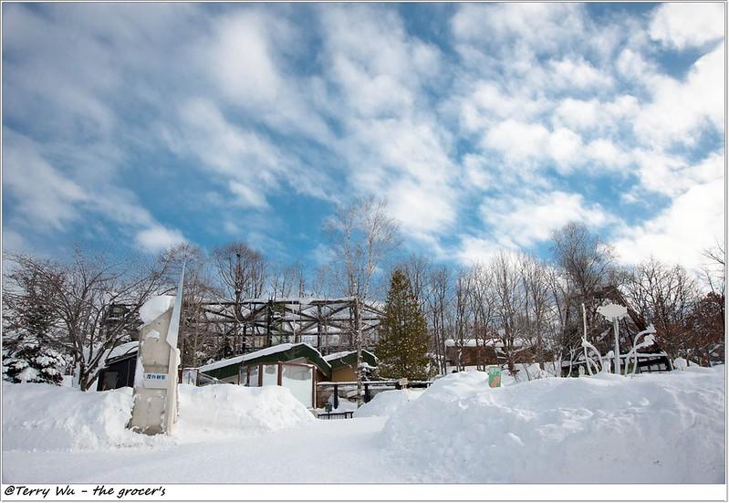 Day5 - 旭山動物園 - 企鵝散步-34