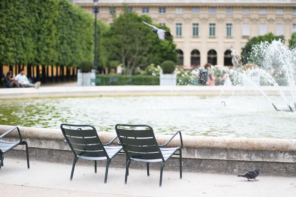 Palais Royal roses-16.jpg