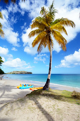 St Lucia  Rendezvous Beach