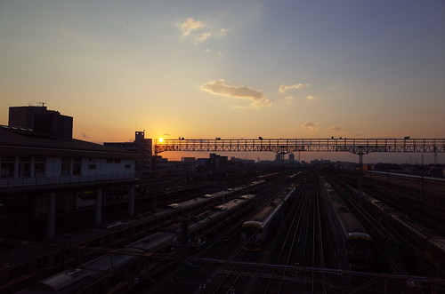 sunset at train nest