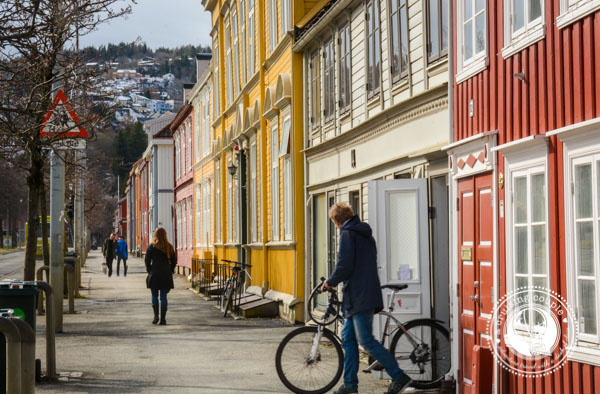 Biking in Trondheim