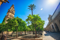 The Great Mosque of Cordoba Courtyard