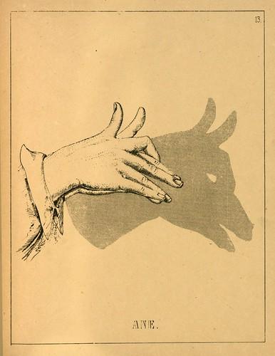 010- El asno-Ombromanie. Premièr série-1860- The Art Walters Museum