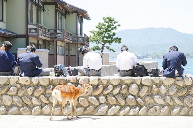 2014_Summer_SanyoArea_Japan_CH4_EP2-11