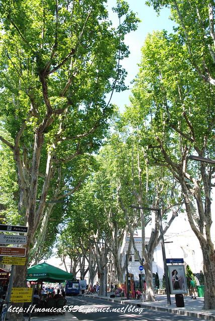 Avignon0005