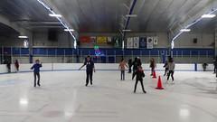 Cousins Ice Skating
