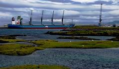 Harbor in Hafnarfjördur