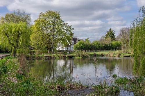hertfordshire willian pond