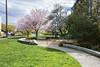 Ballard Corners Park