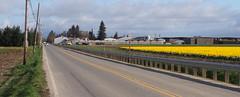 Beaver Marsh Road