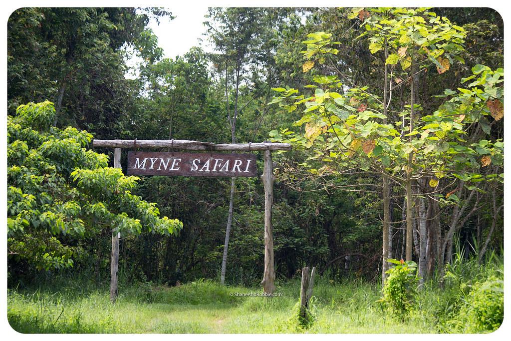 Borneo-20170411-IMG_7581