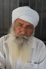 Portrait of a Sikh man