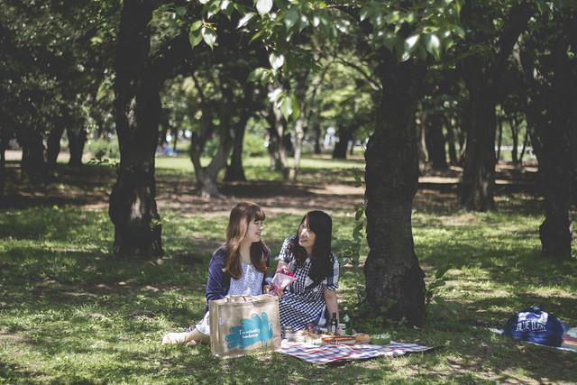picnic18