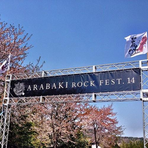 今年もやってきましたARABAKI ROCK Fest.14! 桜がまだ咲いてますよー! 楽しんでまーす(๑˃ꇴ˂๑)ˈ·*♪ #ARABAKI