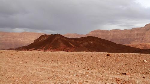 landscape israel desert