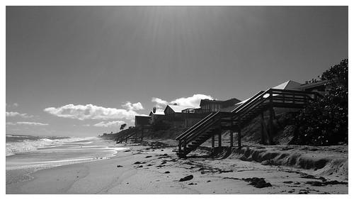 flickrandroidapp:filter=panda florida htc melbournebeach android beach thebeach
