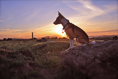 20140502 Bowpi-sunset1