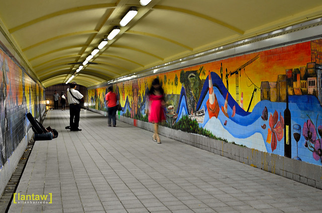 Street Musician in Underpass