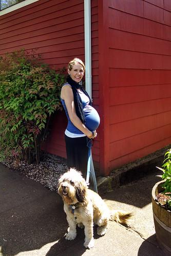 29 weeks pregnant.