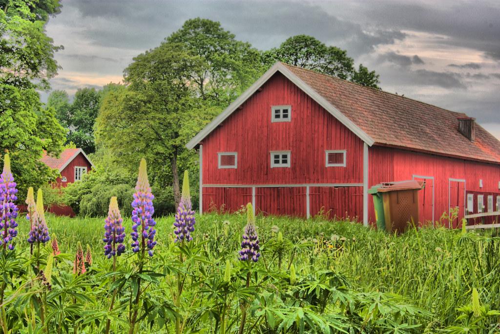 Farming On The Interior Plains