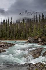 Canadian Rockies - Roads