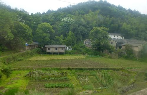 Zhejiang-Yushan-Wenzhou-train (114)
