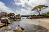 Corse / Korsika 2014: Palombaggia