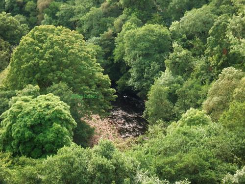 trees england canon woodland river medieval cumbria carlisle englishheritage carlislecastle a570is sueeverett