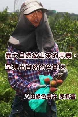 秀明自然農法- 不施肥不灑農藥荔枝箱 (陳佩雲/台南官田.八田農場)