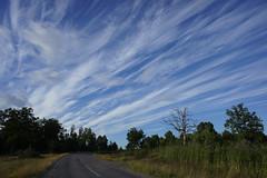 Cirrus clouds, Värmdö, Sweden