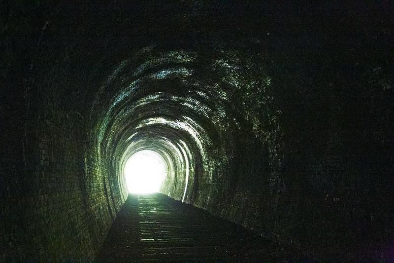 武庫川渓谷廃線ハイキング(生瀬ー武田尾)608