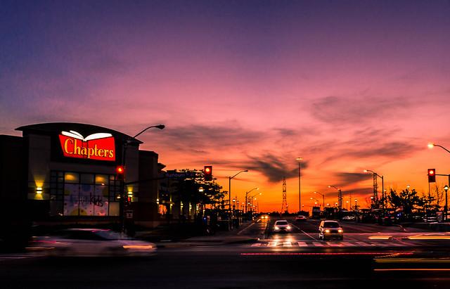 A Carnivorous Sunset