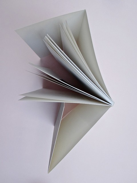 Ortografia della neve, di Francesco Balsamo. incertieditori 2010. Progetto grafico di officina delle immagini. Taglio superiore (part.), 1