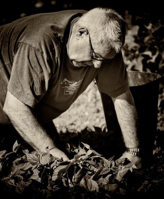 Jardins 69 portrait de jardinier flickr photo sharing for Jardins de jardiniers
