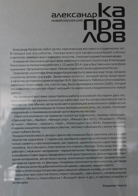 Омск 002