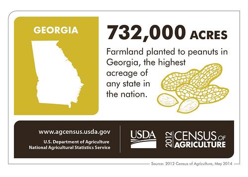 Peanuts, Pecans, Poultry, Peaches – and cotton and quail - Georgia's agriculture is as diverse as its people.  Check back next week to learn about another state and the 2012 Census of Agriculture.